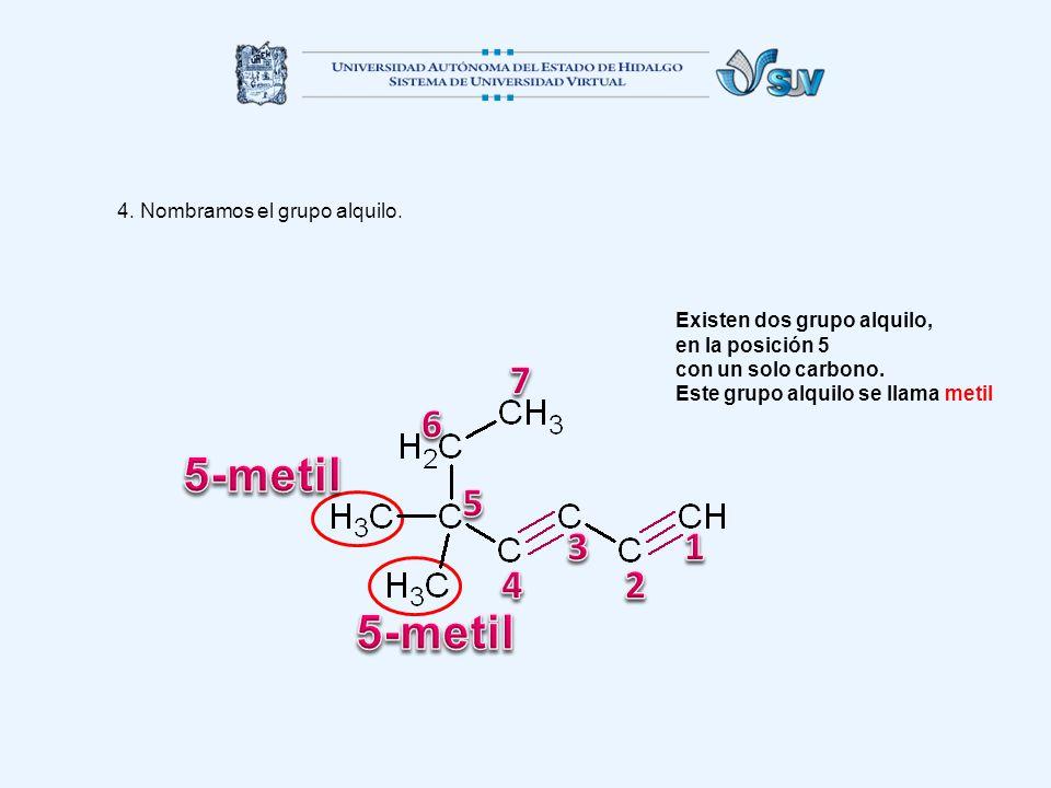 4. Nombramos el grupo alquilo. Existen dos grupo alquilo, en la posición 5 con un solo carbono. Este grupo alquilo se llama metil