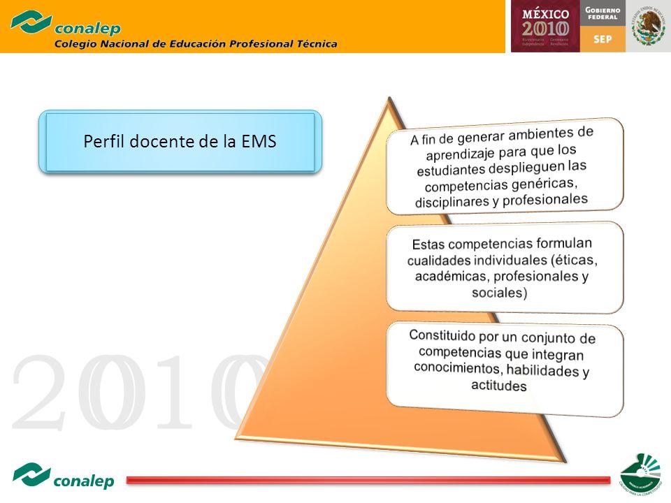 20100 Perfil docente de la EMS