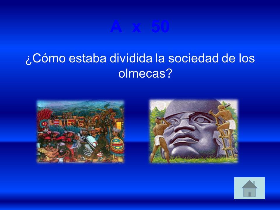 A x 50 ¿Cómo estaba dividida la sociedad de los olmecas?