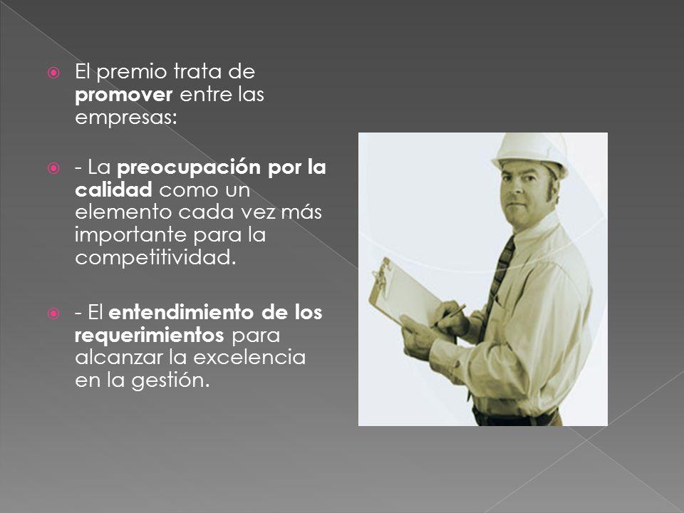 El premio trata de promover entre las empresas: - La preocupación por la calidad como un elemento cada vez más importante para la competitividad. - El