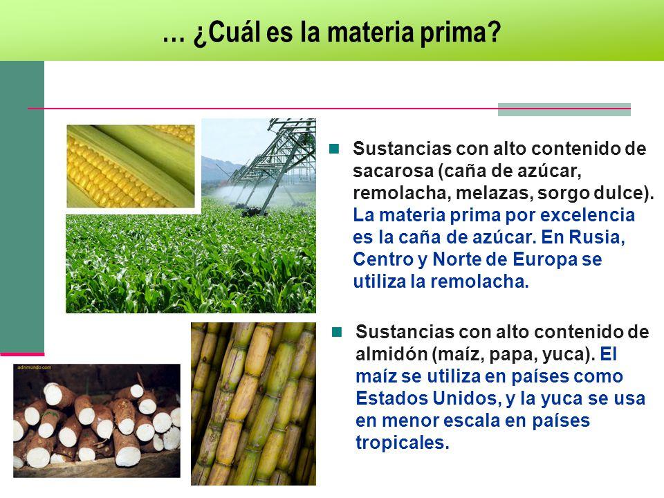 Sustancias con alto contenido de sacarosa (caña de azúcar, remolacha, melazas, sorgo dulce). La materia prima por excelencia es la caña de azúcar. En