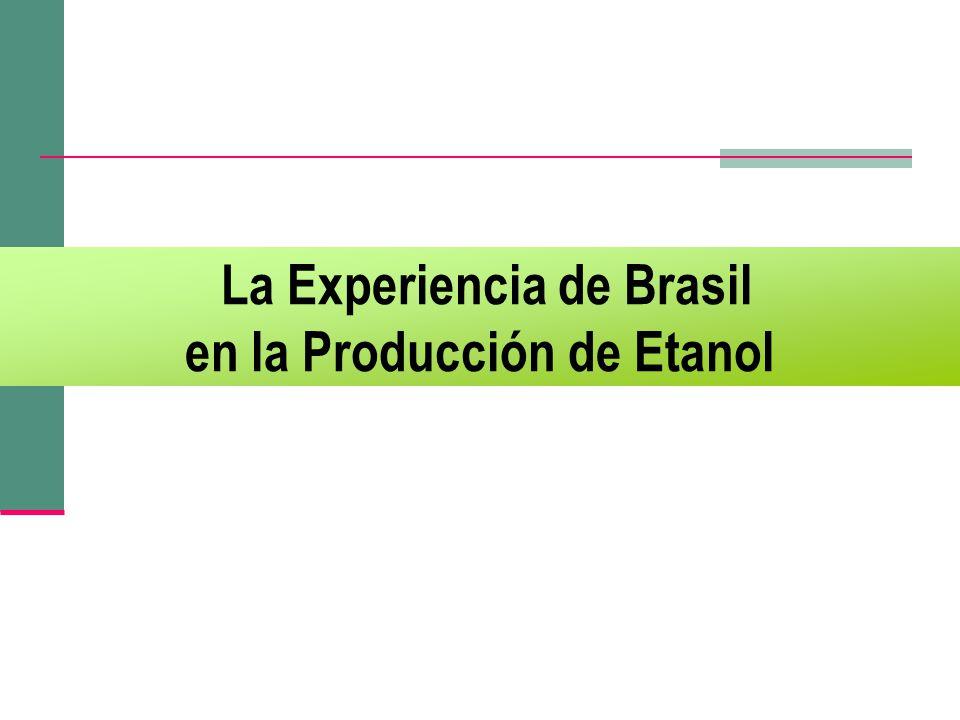 La Experiencia de Brasil en la Producción de Etanol
