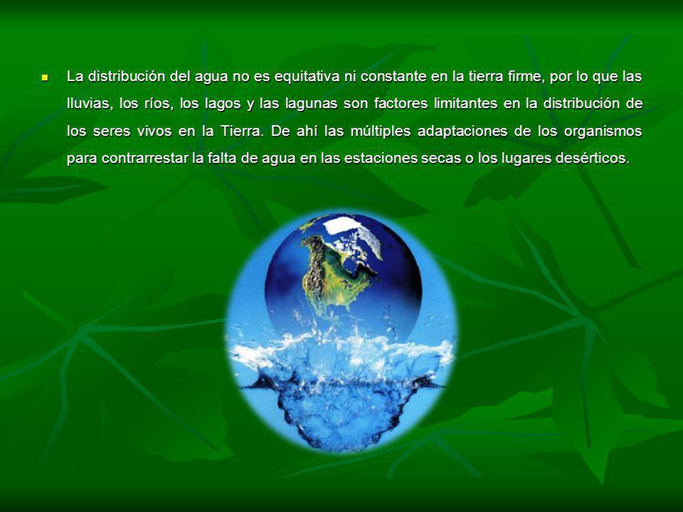 La distribución del agua no es equitativa ni constante en la tierra firme, por lo que las lluvias, los ríos, los lagos y las lagunas son factores limi