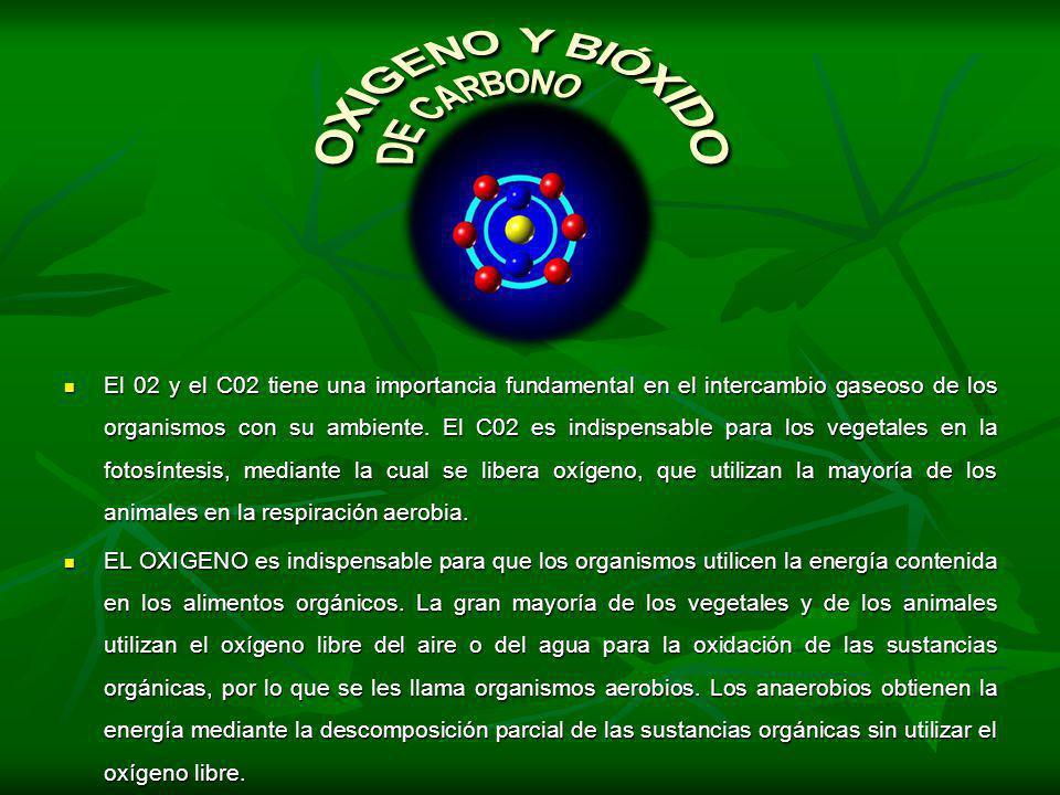 El 02 y el C02 tiene una importancia fundamental en el intercambio gaseoso de los organismos con su ambiente. El C02 es indispensable para los vegetal