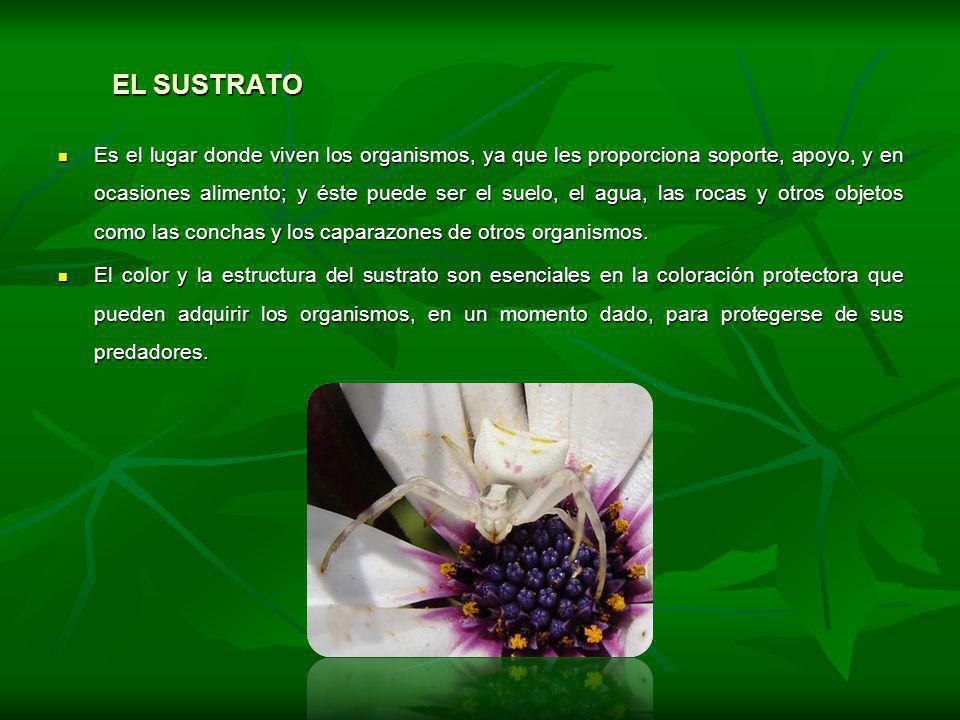 BIBLIOGRAFÍA Y WEBGRAFIA Ecología y conservación ambiental.