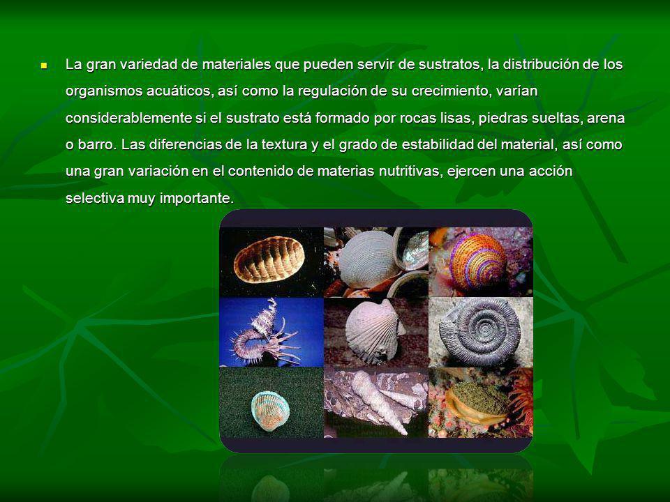 La gran variedad de materiales que pueden servir de sustratos, la distribución de los organismos acuáticos, así como la regulación de su crecimiento,