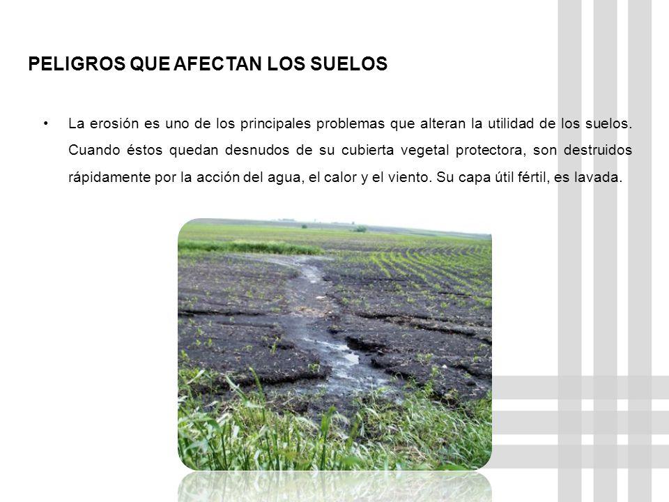 PELIGROS QUE AFECTAN LOS SUELOS La erosión es uno de los principales problemas que alteran la utilidad de los suelos. Cuando éstos quedan desnudos de