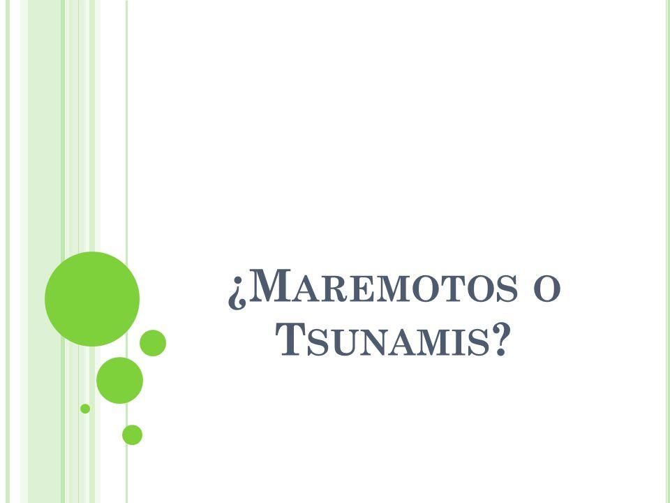 ¿M AREMOTOS O T SUNAMIS ?