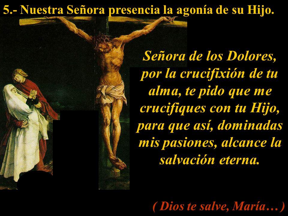 5.- Nuestra Señora presencia la agonía de su Hijo.