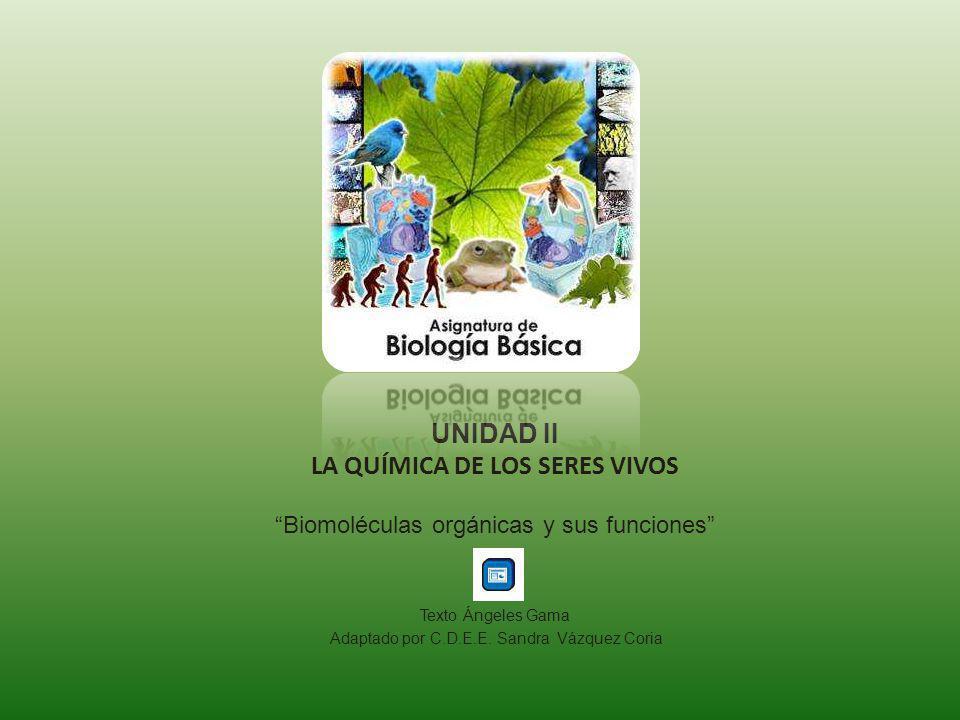 UNIDAD II LA QUÍMICA DE LOS SERES VIVOS Biomoléculas orgánicas y sus funciones Texto Ángeles Gama Adaptado por C.D.E.E. Sandra Vázquez Coria