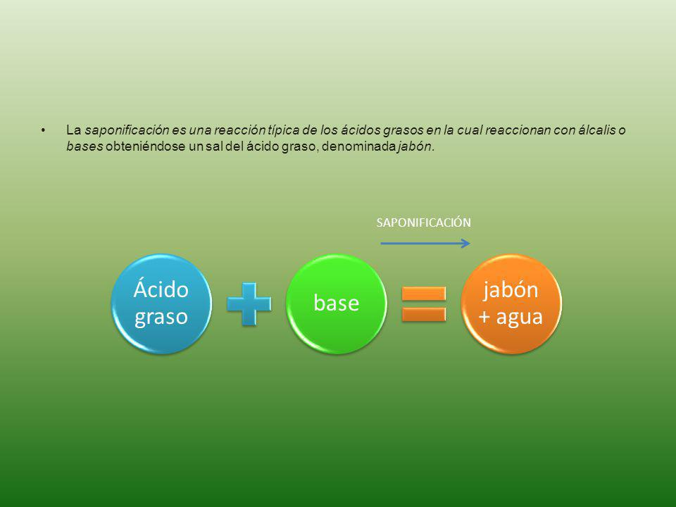 La saponificación es una reacción típica de los ácidos grasos en la cual reaccionan con álcalis o bases obteniéndose un sal del ácido graso, denominad