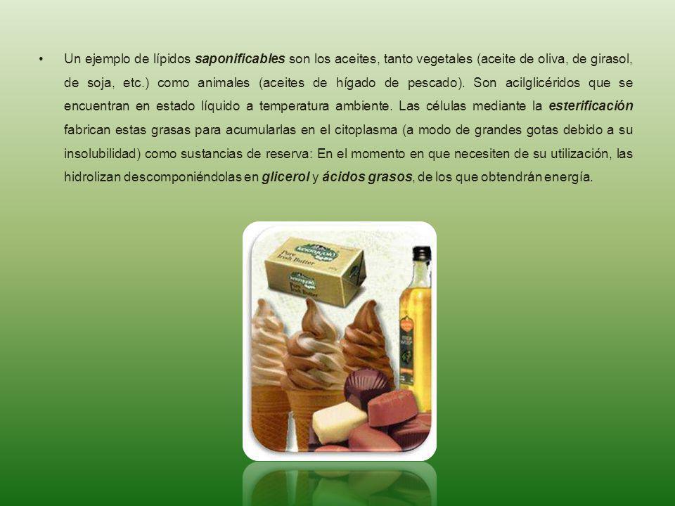 Un ejemplo de lípidos saponificables son los aceites, tanto vegetales (aceite de oliva, de girasol, de soja, etc.) como animales (aceites de hígado de pescado).