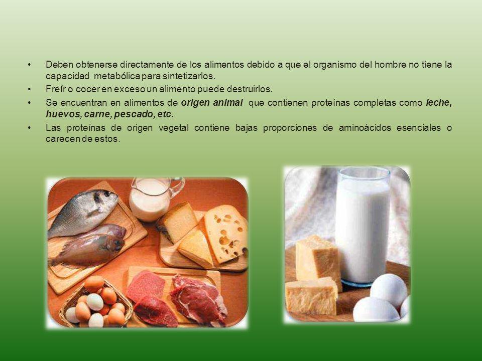 Deben obtenerse directamente de los alimentos debido a que el organismo del hombre no tiene la capacidad metabólica para sintetizarlos.