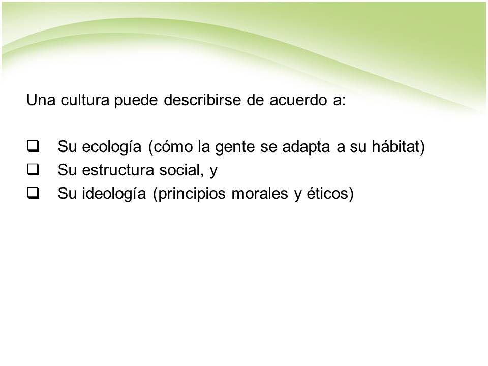 Una cultura puede describirse de acuerdo a: Su ecología (cómo la gente se adapta a su hábitat) Su estructura social, y Su ideología (principios morales y éticos)