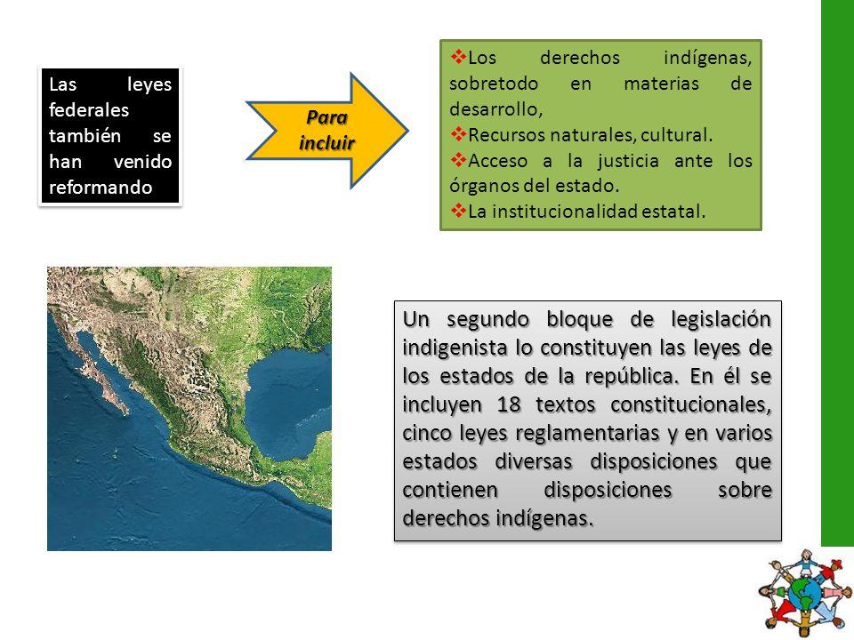 la Constitución Federal Deja fuera: El carácter de sujetos de derecho público de los pueblos indígenas.