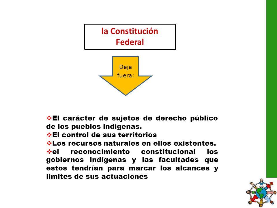la Constitución Federal Deja fuera: El carácter de sujetos de derecho público de los pueblos indígenas. El control de sus territorios Los recursos nat