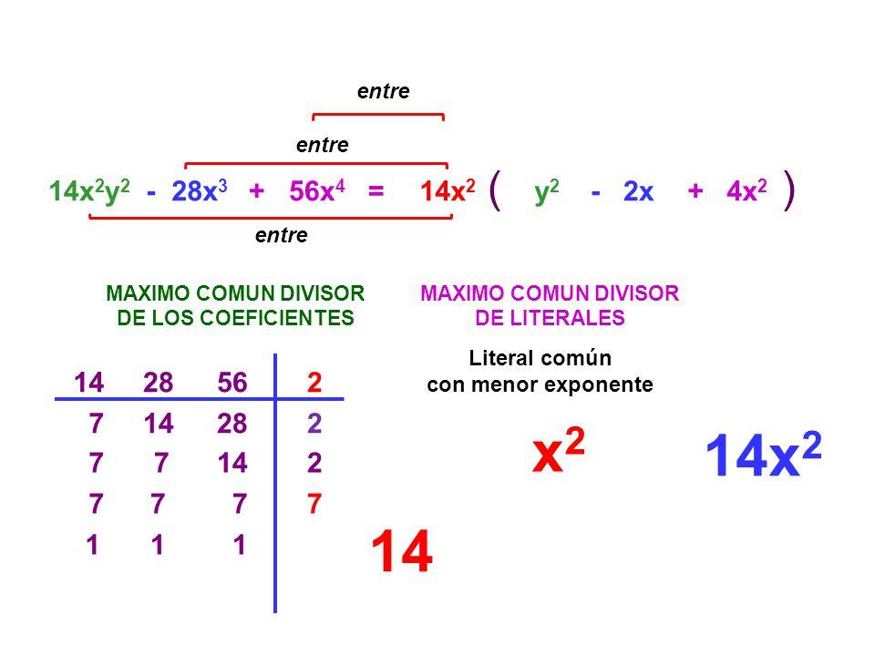 =14x 2 y 2 - 28x 3 MAXIMO COMUN DIVISOR DE LOS COEFICIENTES 28562 14282 7142 7 77 1 1 MAXIMO COMUN DIVISOR DE LITERALES x 2 14x 2 () entre 14x 2 y2y2