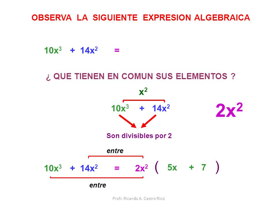 2x 2 () =10x 3 + 14x 2 OBSERVA LA SIGUIENTE EXPRESION ALGEBRAICA ¿ QUE TIENEN EN COMUN SUS ELEMENTOS ? 10x 3 + 14x 2 x 2 Son divisibles por 2 2x 2 =10