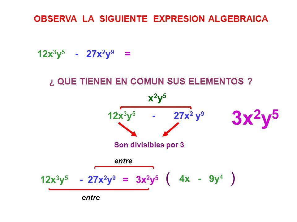 3x 2 y 5 () =12x 3 y 5 - 27x 2 y 9 OBSERVA LA SIGUIENTE EXPRESION ALGEBRAICA ¿ QUE TIENEN EN COMUN SUS ELEMENTOS ? 12x 3 y 5 - 27x 2 y 9 x 2 y 5 Son d