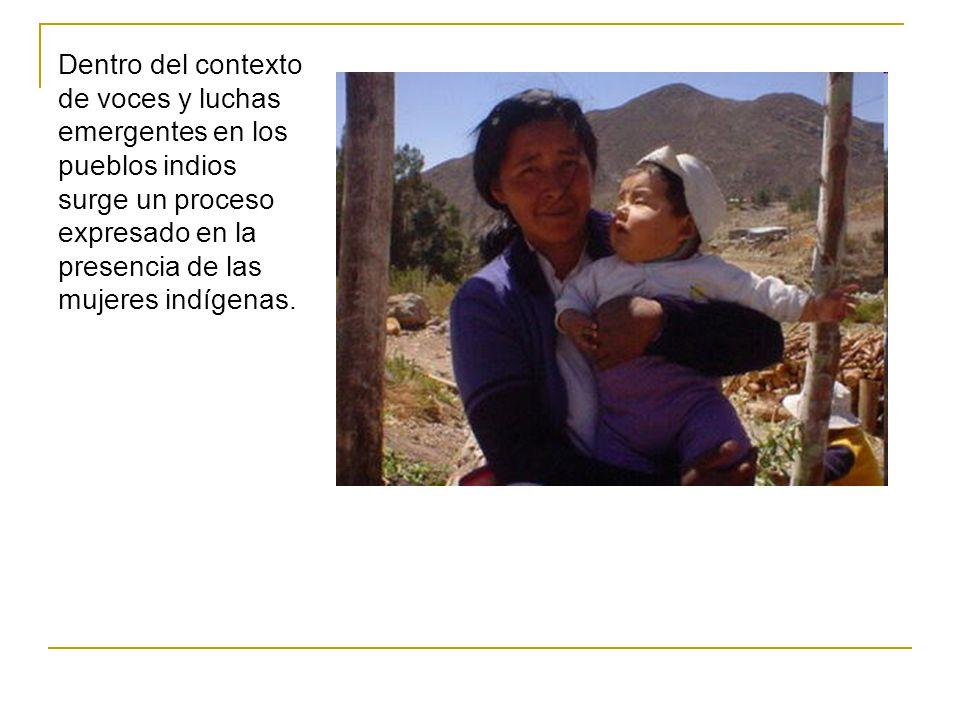 Adaptación del texto: Palomo Sánchez, Nellys (1999) Las mujeres indígenas: Surgimiento de una identidad colectiva insurgente.