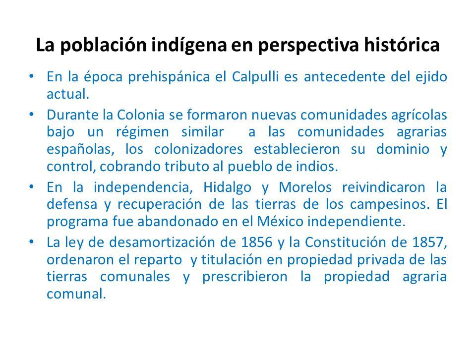 La población indígena en perspectiva histórica En la época prehispánica el Calpulli es antecedente del ejido actual.