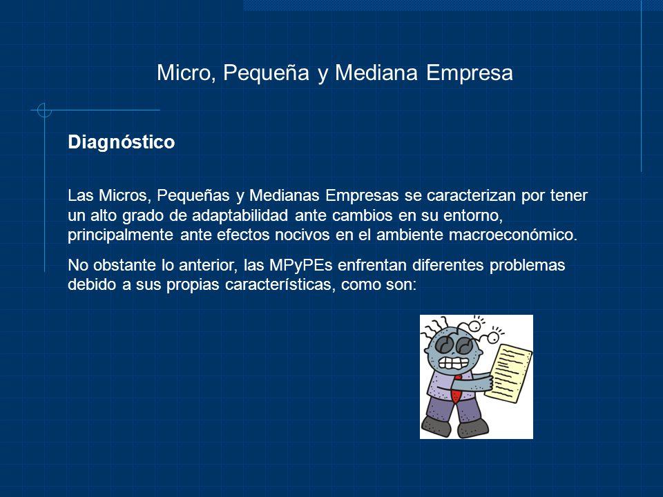 Micro, Pequeña y Mediana Empresa Diagnóstico Las Micros, Pequeñas y Medianas Empresas se caracterizan por tener un alto grado de adaptabilidad ante ca