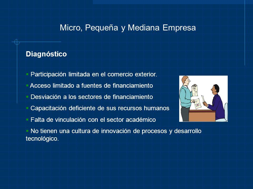 Micro, Pequeña y Mediana Empresa Diagnóstico Participación limitada en el comercio exterior. Acceso limitado a fuentes de financiamiento Desviación a