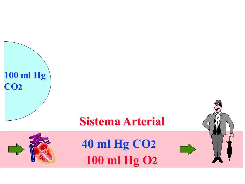 Sistema Arterial 100 ml Hg O 2 40 ml Hg CO 2 100 ml Hg CO 2