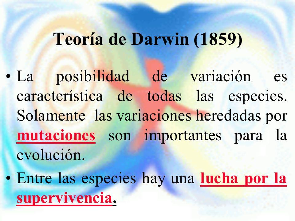Teoría de Darwin (1859) La posibilidad de variación es característica de todas las especies. Solamente las variaciones heredadas por mutaciones son im
