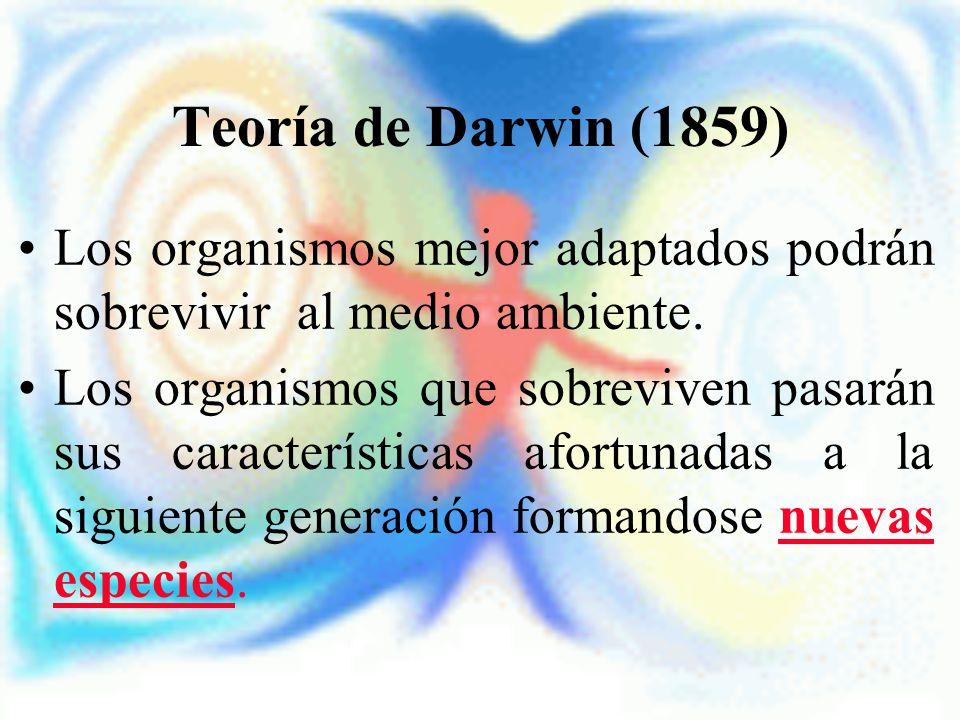 Teoría de Darwin (1859) Los organismos mejor adaptados podrán sobrevivir al medio ambiente. Los organismos que sobreviven pasarán sus características
