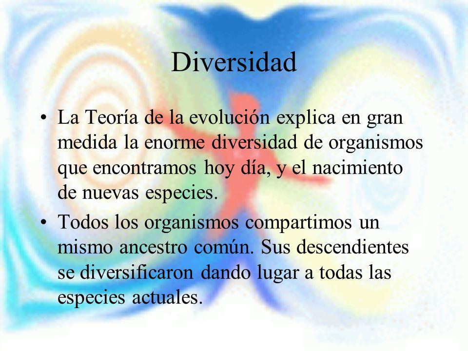Diversidad La Teoría de la evolución explica en gran medida la enorme diversidad de organismos que encontramos hoy día, y el nacimiento de nuevas espe