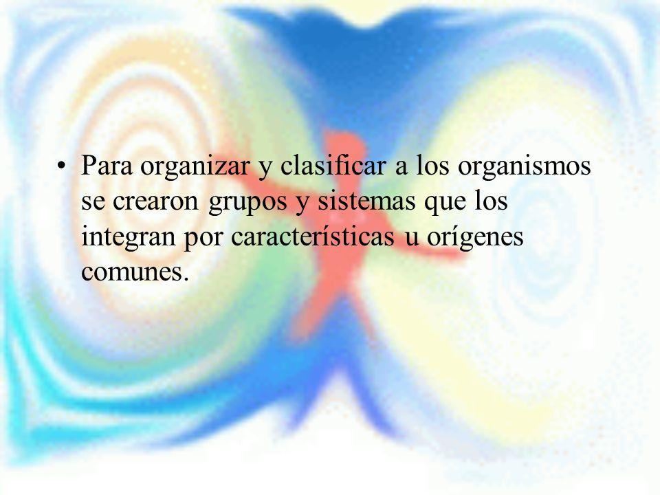 Para organizar y clasificar a los organismos se crearon grupos y sistemas que los integran por características u orígenes comunes.