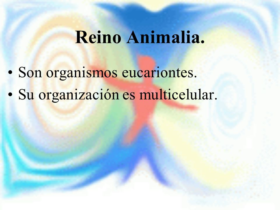 Reino Animalia. Son organismos eucariontes. Su organización es multicelular.