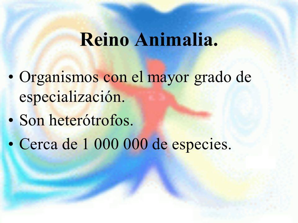 Reino Animalia. Organismos con el mayor grado de especialización. Son heterótrofos. Cerca de 1 000 000 de especies.