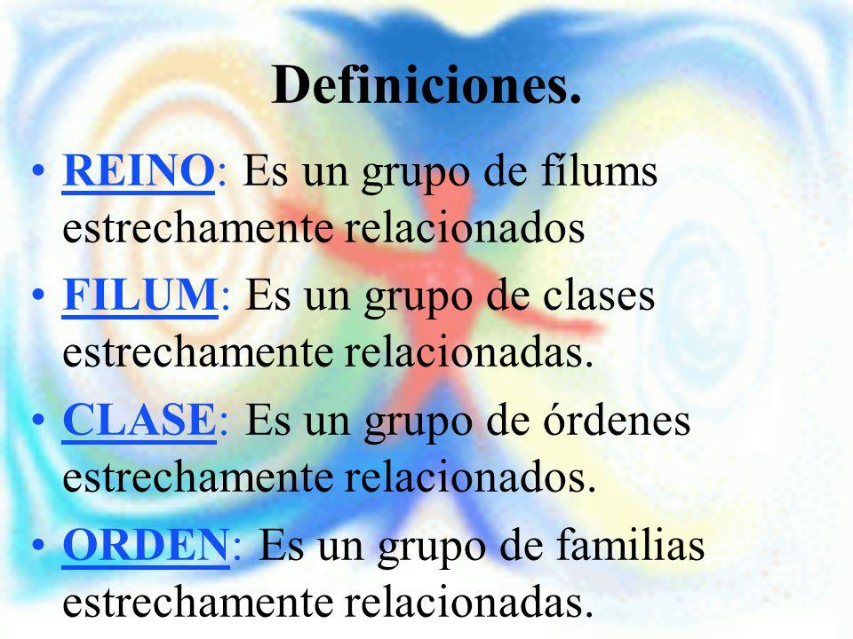 Definiciones. REINO: Es un grupo de fílums estrechamente relacionados FILUM: Es un grupo de clases estrechamente relacionadas. CLASE: Es un grupo de ó