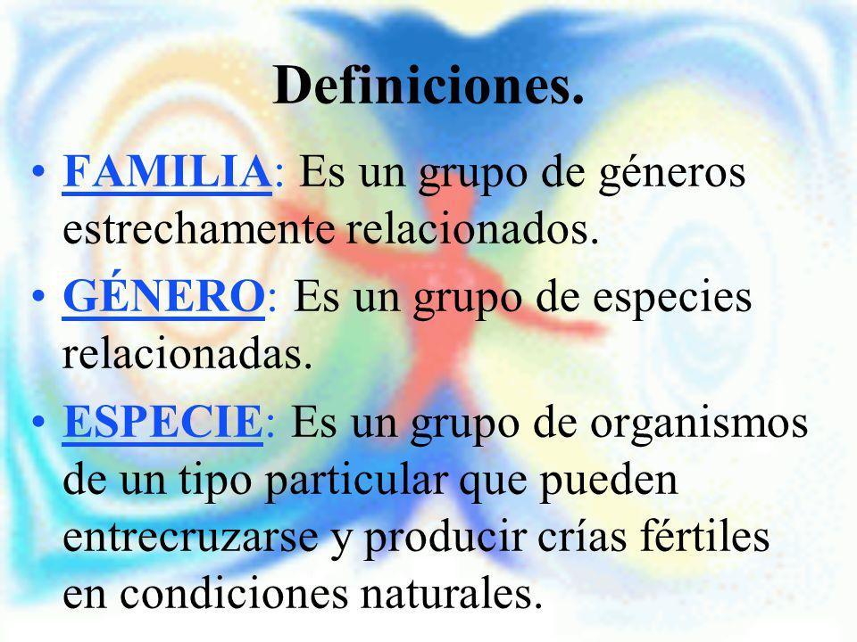 Definiciones. FAMILIA: Es un grupo de géneros estrechamente relacionados. GÉNERO: Es un grupo de especies relacionadas. ESPECIE: Es un grupo de organi