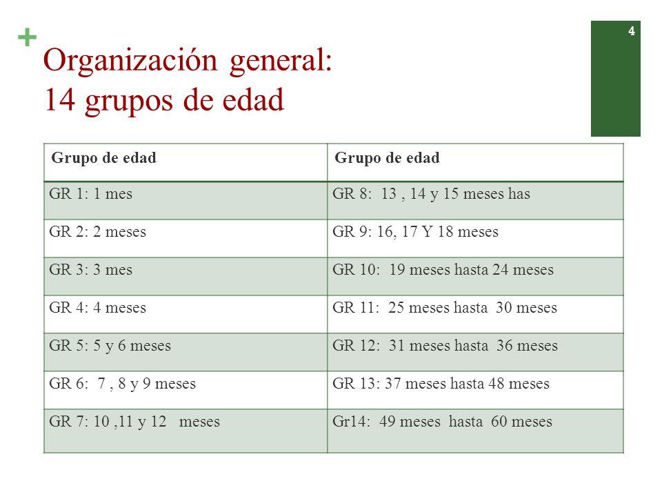 + Edades de aplicación obligatoria Rango edadAplicación obligatoria 1 - 2 m 5 - 7 m 16 -18 m 25 - 31 m 37 - 48 m 49 - 60 m 1 m 6 m 18 m 30 m 42 m 60 m 5