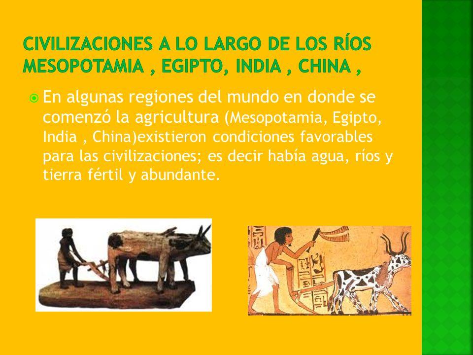 En algunas regiones del mundo en donde se comenzó la agricultura ( Mesopotamia, Egipto, India, China)existieron condiciones favorables para las civili