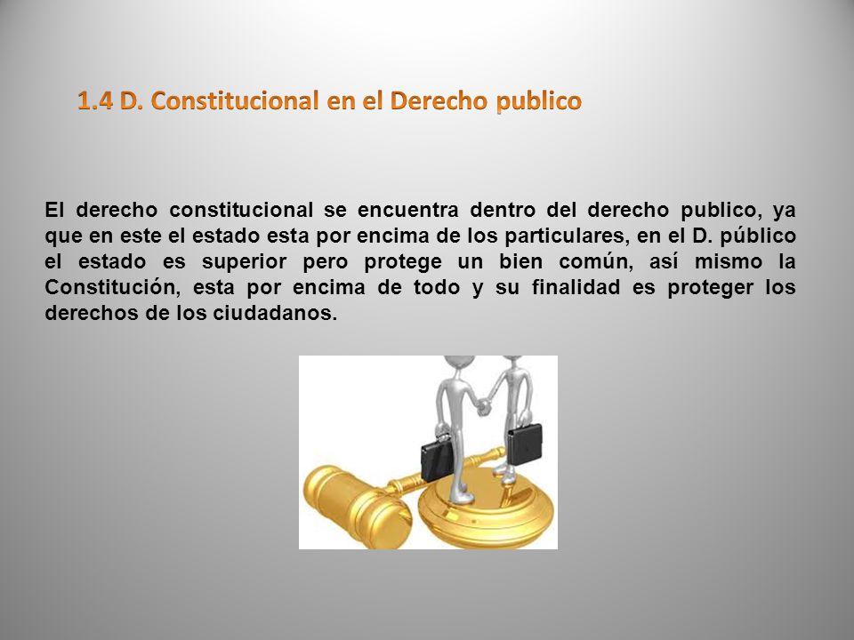 DERECHO CONSTITUCIONAL D.procesalD. Int privado D.
