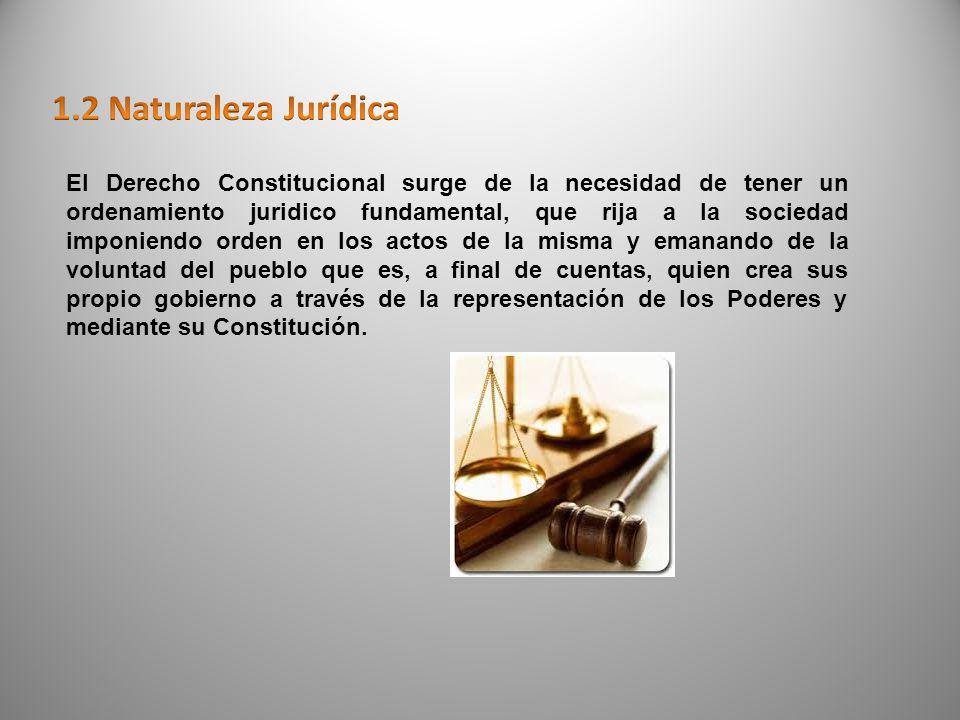 DERECHO PUBLICODERECHO PRIVADODERECHO SOCIAL CONSTITUCIONALCIVILLABORAL ADMINISTRATIVOMERCANTILAGRARIO PENALINT.