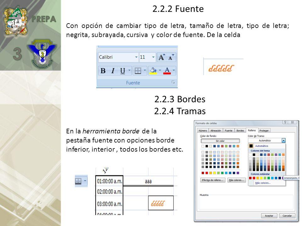 2.2.2 Fuente 2.2.3 Bordes 2.2.4 Tramas Con opción de cambiar tipo de letra, tamaño de letra, tipo de letra; negrita, subrayada, cursiva y color de fue