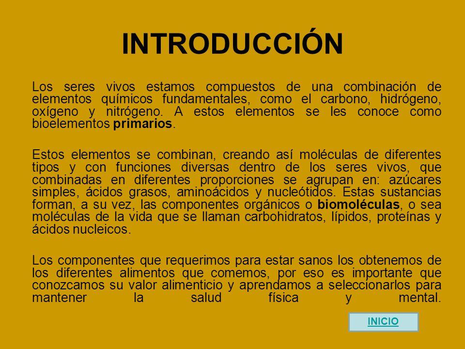 ACTIVIDAD DE APRENDIZAJE 3 ¿Qué comes.