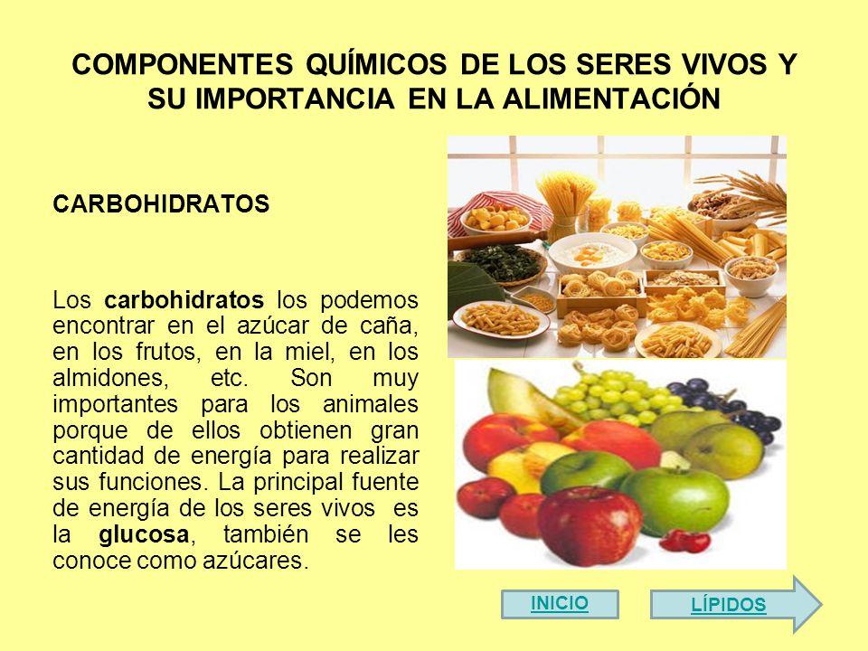 COMPONENTES QUÍMICOS DE LOS SERES VIVOS Y SU IMPORTANCIA EN LA ALIMENTACIÓN CARBOHIDRATOS Los carbohidratos los podemos encontrar en el azúcar de caña, en los frutos, en la miel, en los almidones, etc.