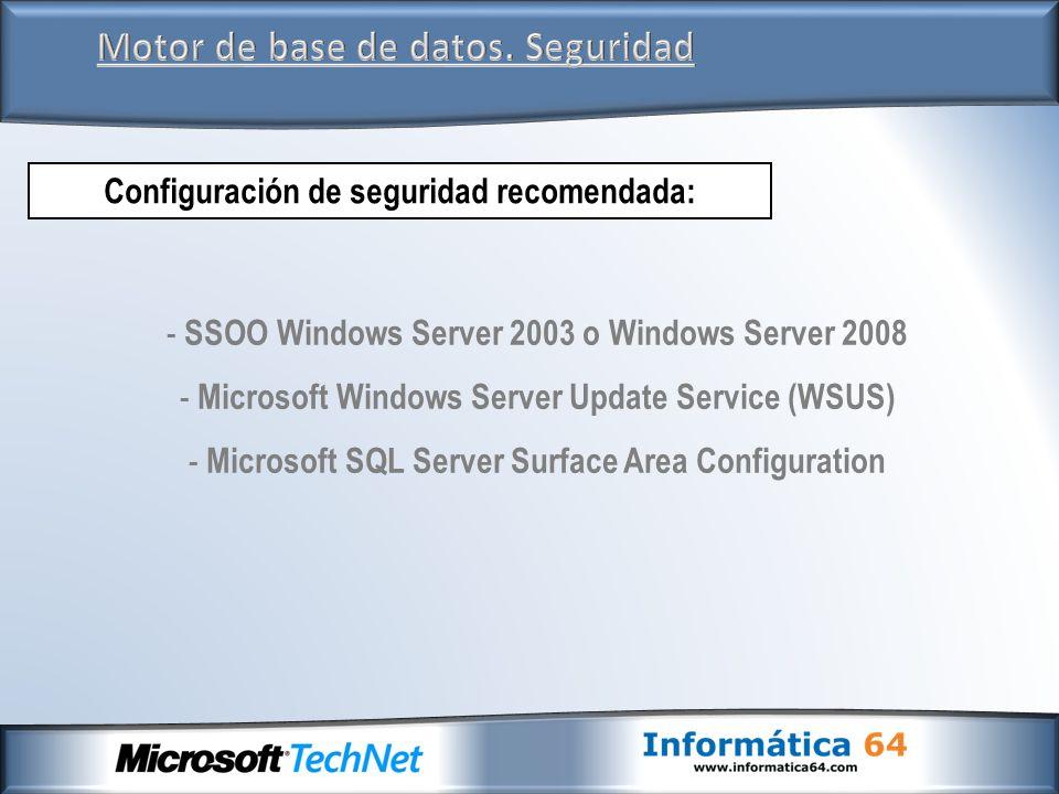 Motor de base de datos. Seguridad - SSOO Windows Server 2003 o Windows Server 2008 - Microsoft Windows Server Update Service (WSUS) - Microsoft SQL Se
