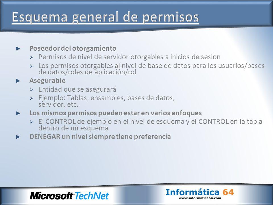 Poseedor del otorgamiento Permisos de nivel de servidor otorgables a inicios de sesión Los permisos otorgables al nivel de base de datos para los usua