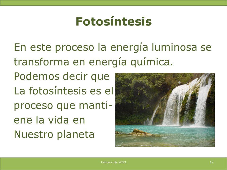 En este proceso la energía luminosa se transforma en energía química. Podemos decir que La fotosíntesis es el proceso que manti- ene la vida en Nuestr