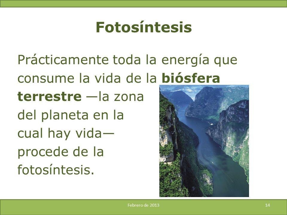 Prácticamente toda la energía que consume la vida de la biósfera terrestre la zona del planeta en la cual hay vida procede de la fotosíntesis. Febrero