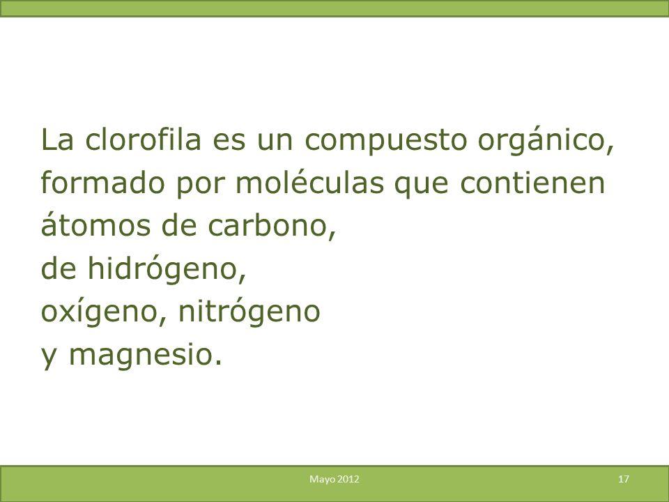 La clorofila es un compuesto orgánico, formado por moléculas que contienen átomos de carbono, de hidrógeno, oxígeno, nitrógeno y magnesio. Mayo 201217