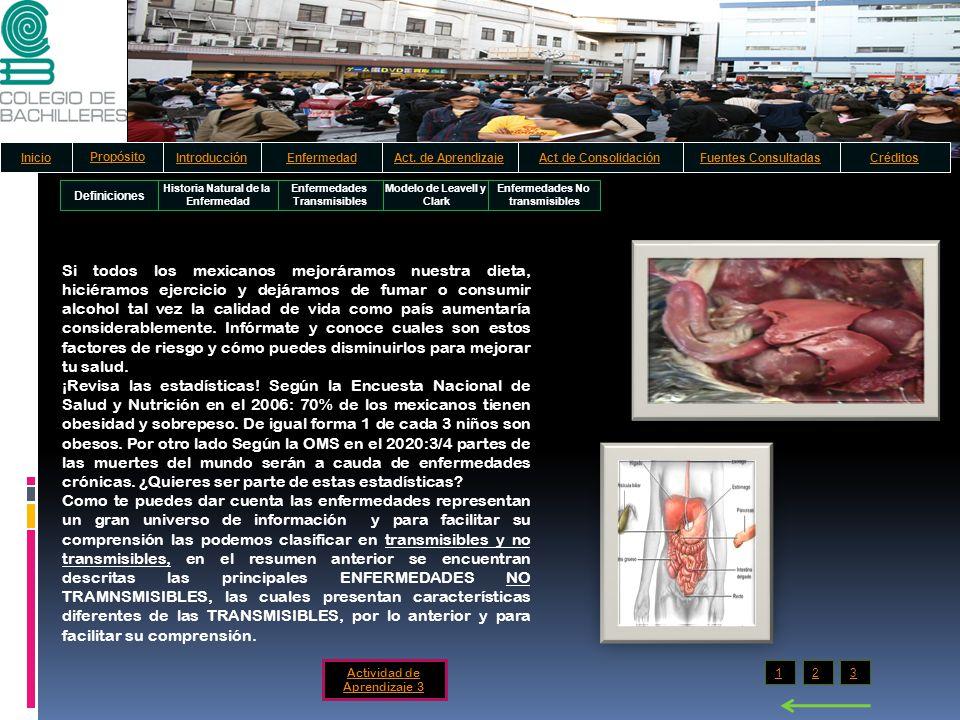 Definiciones Historia Natural de la Enfermedad Enfermedades Transmisibles Modelo de Leavell y Clark Enfermedades No transmisibles Si todos los mexican