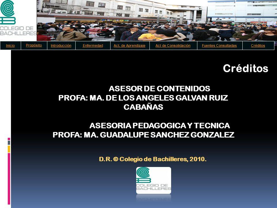 ASESOR DE CONTENIDOS PROFA: MA. DE LOS ANGELES GALVAN RUIZ CABAÑAS ASESORIA PEDAGOGICA Y TECNICA PROFA: MA. GUADALUPE SANCHEZ GONZALEZ D.R. © Colegio